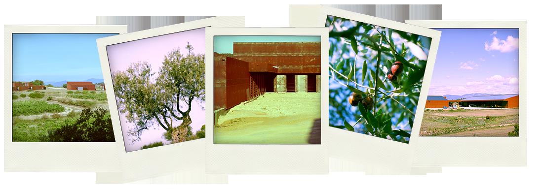 Le moulin du Mas Palat, du croquis à la réalité